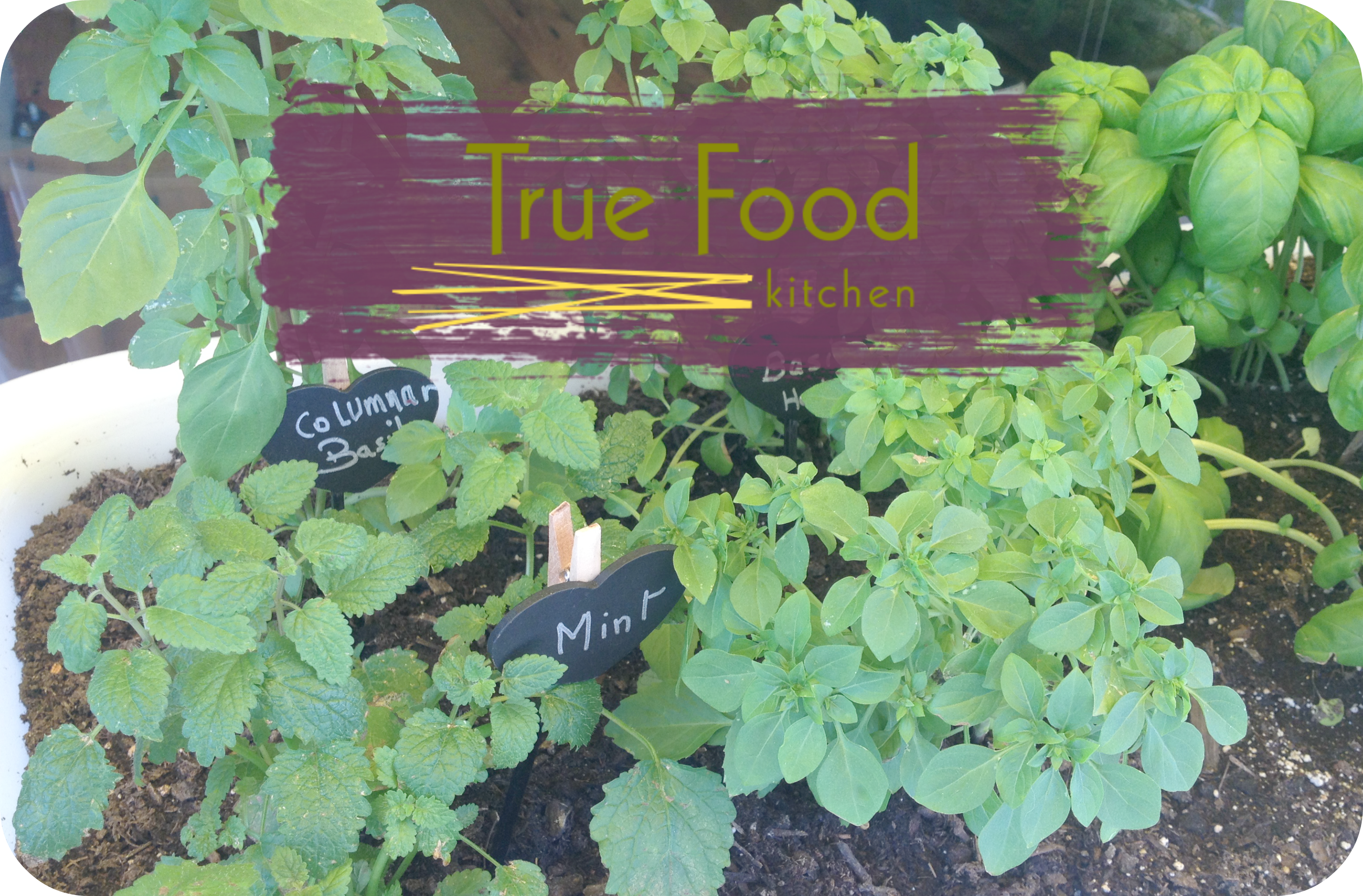 Garden Kitchen Houston Lean Green Island Girl True Food Kitchen Healthy Sustainable